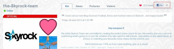 BLOGS &amp; PROFILES : The things you 'like' on Skyrock appear on Facebook!