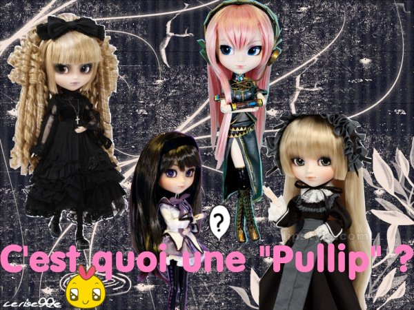 c 39 est quoi une pullip. Black Bedroom Furniture Sets. Home Design Ideas